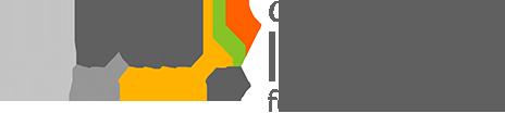 Virtual Center of Excellence - logo gray txt